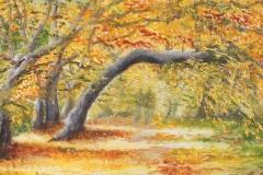 Im Herbst entschwunden