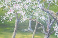 1_Bäume-im-Frühling