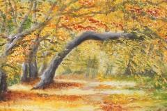 Im-Herbst-entschwunden